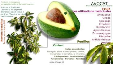 fruit aphrodisiaque, fertilité, sex