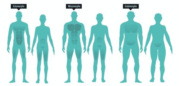 corps mince et dynamique