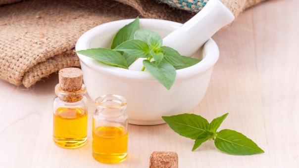 huiles essentielles et plante